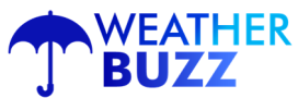 Weather Buzz